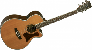 TANGLEWOOD 45NSE